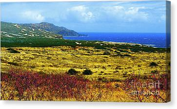Moomomi Preserve Canvas Print by James Temple