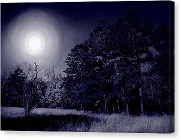 Moon And Dreams Canvas Print by Nina Fosdick