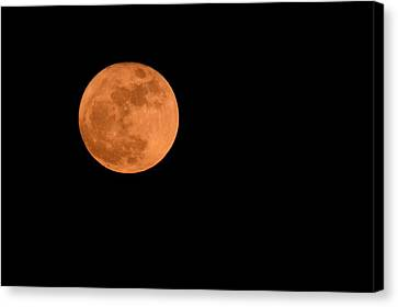 Canvas Print featuring the photograph Moon Before Yule  by Bradford Martin