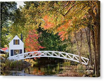 Moon Bridge In Autumn Canvas Print by Susan Cole Kelly