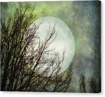 Moon Dream Canvas Print by Patricia Strand