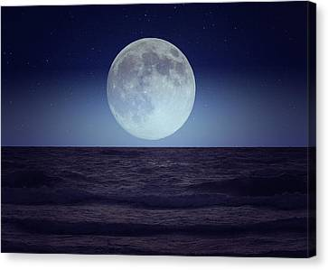 Moon Glow Canvas Print by Gary Nelson