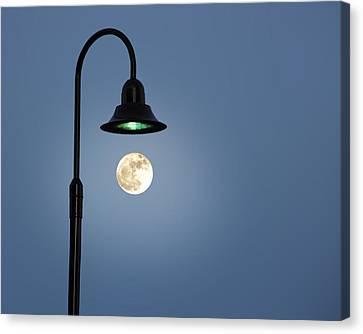 Moon Lighting Canvas Print by Tom McCarthy