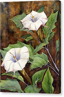 Moon Lilies Canvas Print by Catherine G McElroy
