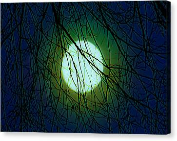 Moon Of The Werewolf Canvas Print by DigiArt Diaries by Vicky B Fuller