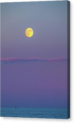 Moon Over Canvas Print by Karol Livote