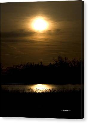 Moon Over The Pond Canvas Print