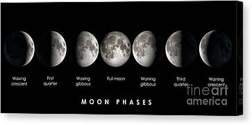 Moon Phases Canvas Print by Delphimages Photo Creations