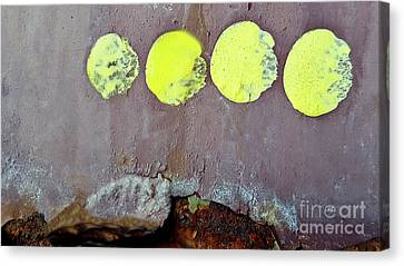 Moon Phases Canvas Print by Sharon Eng