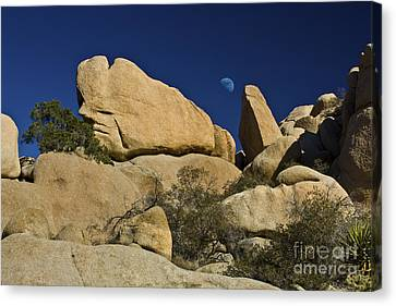 Moon Rising Over Indian Rock Canvas Print