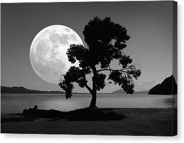 Moon Rising Over The Sea Canvas Print by Detlev Van Ravenswaay