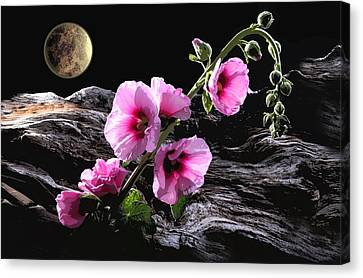 Moon Scape Canvas Print by Manfred Lutzius