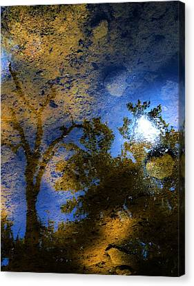 Moon Shadow Canvas Print