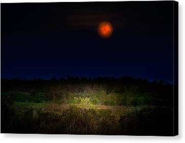 Moonglow II Canvas Print by Mark Andrew Thomas