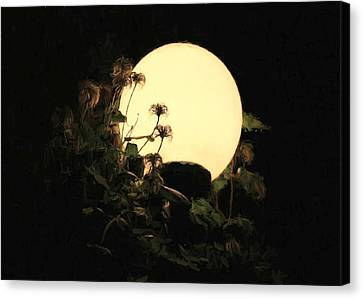 Moonglow Thistles Canvas Print