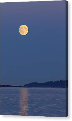Moonlight - 365-224 Canvas Print
