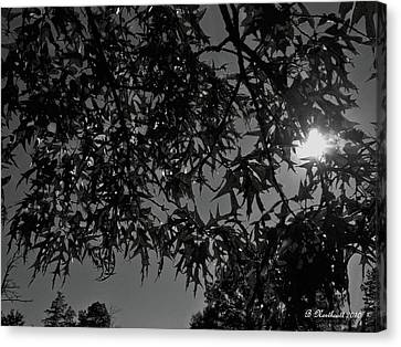 Canvas Print featuring the photograph Moonlight by Betty Northcutt