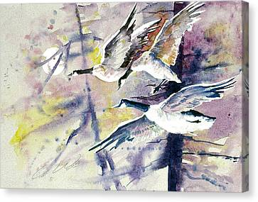 Moonlight Canadian Geese Canvas Print by Connie Williams
