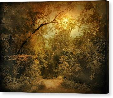 Moonlight Clearing Canvas Print by Jessica Jenney