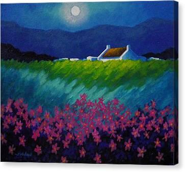 Moonlight County Wicklow Canvas Print by John  Nolan