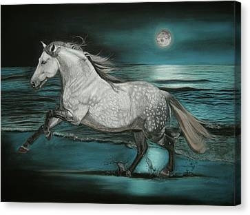 Moonlight Dancer Canvas Print by Sabine Lackner