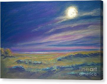 Moonlight On The Dunes Canvas Print by Addie Hocynec