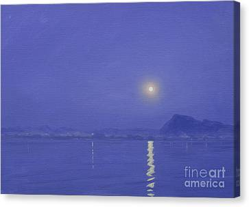 Moonlight Over Udaipur Canvas Print by Derek Hare
