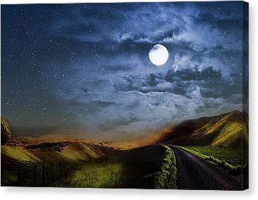 Moonlight Path Canvas Print
