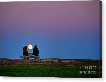 Moonlight Picnic Canvas Print by Olivier Le Queinec