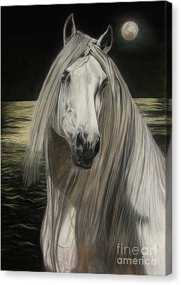 Moonlight Canvas Print by Sabine Lackner