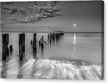 Canvas Print featuring the photograph Moonlight Serenade by Mike Lang