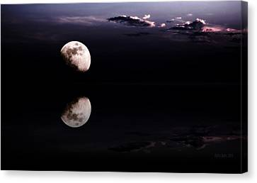 Moonlight Shadow Canvas Print by Steve K