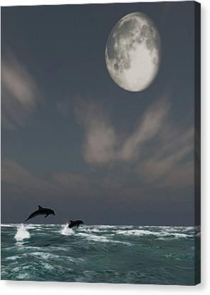 Moonlight Swim Canvas Print by Richard Rizzo