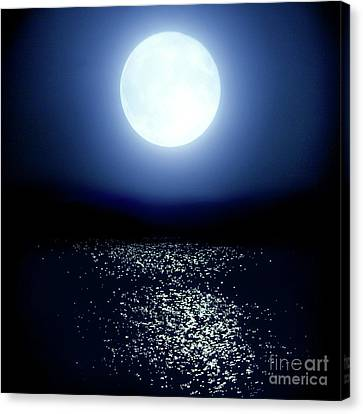 Moonlight Canvas Print by Tatsuya Atarashi