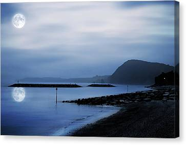 Moonlit Beach  Canvas Print