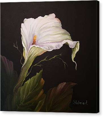 Moonlit Calla Lily Canvas Print by Sherry Winkler