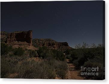 Moonlit Path Canvas Print by Melany Sarafis