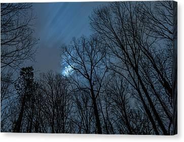 Moonlit Sky Canvas Print