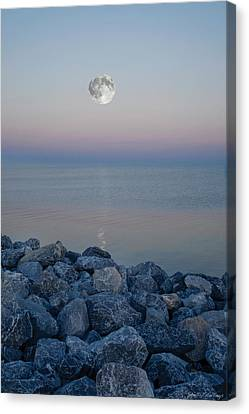 Moonlit Twilight Canvas Print by Shelly Stallings