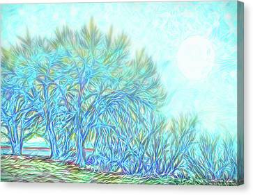Canvas Print featuring the digital art Moonlit Winter Trees In Blue - Boulder County Colorado by Joel Bruce Wallach