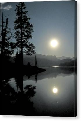 Moonrise At Edison Canvas Print by Larry Darnell