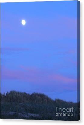 Moonrise At Ocean Beach 1 Canvas Print by Lori Ziemba