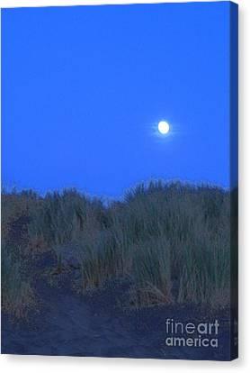 Moonrise At Ocean Beach Canvas Print by Lori Ziemba