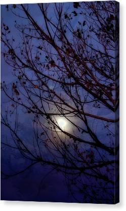 Canvas Print featuring the photograph Moonrise by Ellen Heaverlo