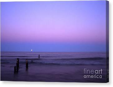 Moonrise Canvas Print by Timothy Johnson