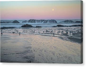 Moonset At Seal Rock Canvas Print