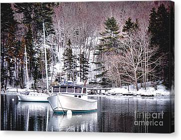 Moored Boats In Maine Winter  Canvas Print by Olivier Le Queinec