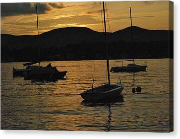Moored Canvas Print by Peter Williams