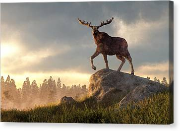 Moose At Dawn Canvas Print