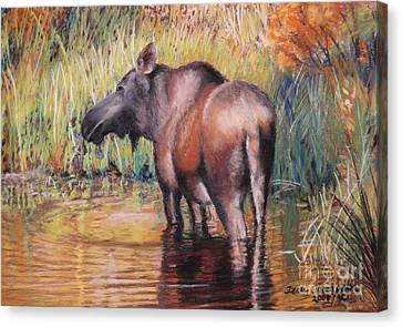 Canvas Print featuring the pastel Moose In Alaska by Terri Thompson